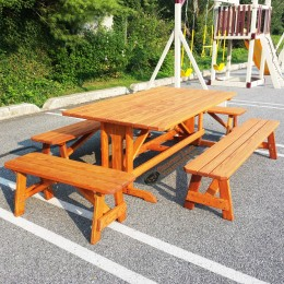Custom Picnic Table Set